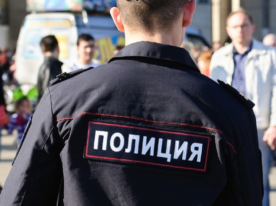 ЛДПР рассказал о псевдо-кандидатах и полицейских в ИКМО «Сергиевское»