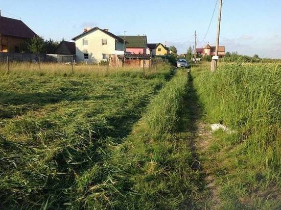 В Калининградской области садовые товарищества проверят на экологию