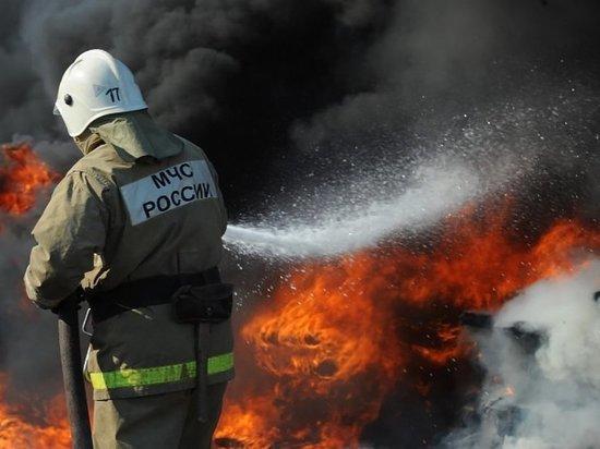 В Калининграде в СНТ «Мечта» ночью сгорела баня