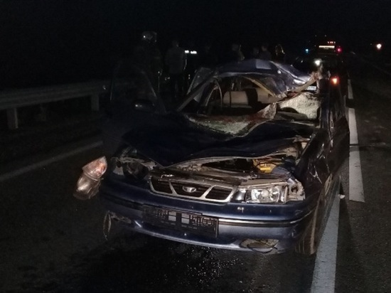 Свердловчанин погиб при столкновении автомобиля с лосем