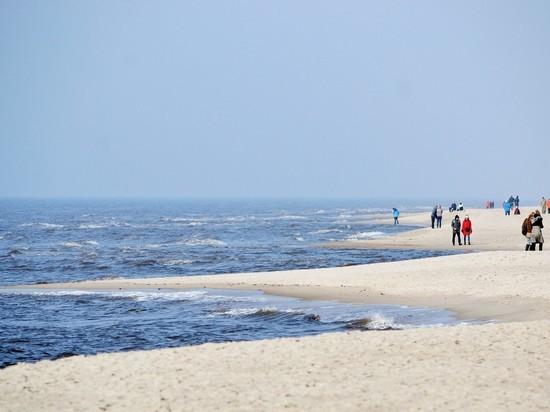 В Зеленоградске на пляже пропала 12-летняя девочка