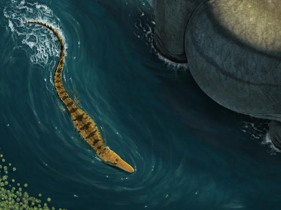 Палеонтологи открыли древнего пожирателя динозавров