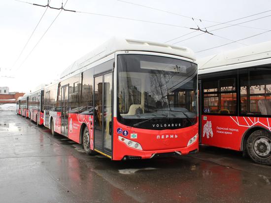 В Перми вместо троллейбусов запустили автобусные маршруты