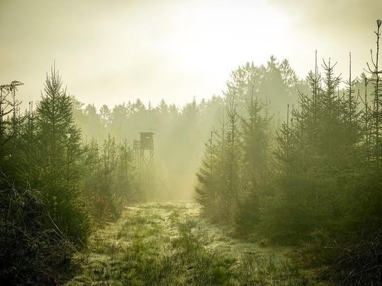 Финляндия отказала в политическом убежище россиянину, который бежал через Карелию
