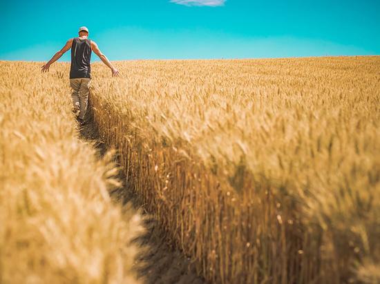 Жители Бурятии смогут получить «дальневосточный» гектар с 1 августа