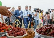 Губернатор Александр Гусев посетил выставку «День Воронежского поля»