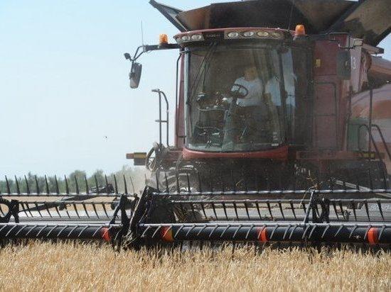 В Волгоградской области собрали первый миллион тонн зерна