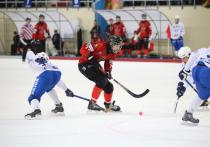 Кубок губернатора по хоккею с мячом впервые пройдет в Хабаровске