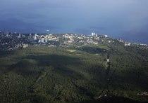 Глава республики заявил, что приезд Дуни Миятович на полуостров поможет ей убедиться в происходящем в Крыму.
