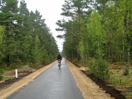 Велодорожка на Куршской косе обойдётся бюджету региона в 364 млн рублей