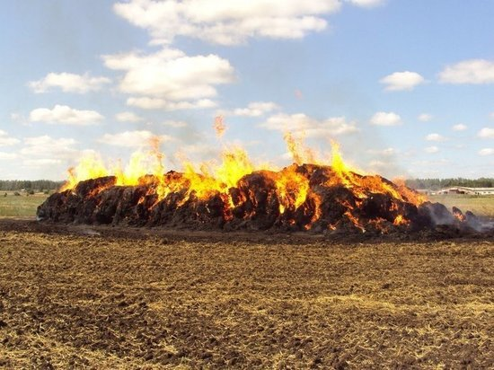 В Правдинске фермеры едва не лишились 36 тонн сена во время пожара