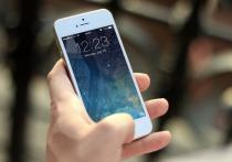 В Санкт-Петербурге рязанец украл айфон и пытался сбежать от полиции