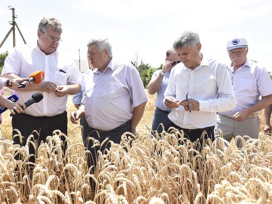 Глава Ставрополья призвал не забывать о людях в «битве за урожай»