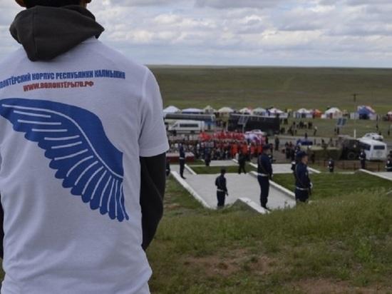 На развитие добровольчества Калмыкия получит 4,5 миллиона