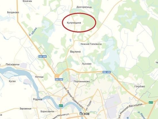 В Псковском районе собираются устроить новое кладбище