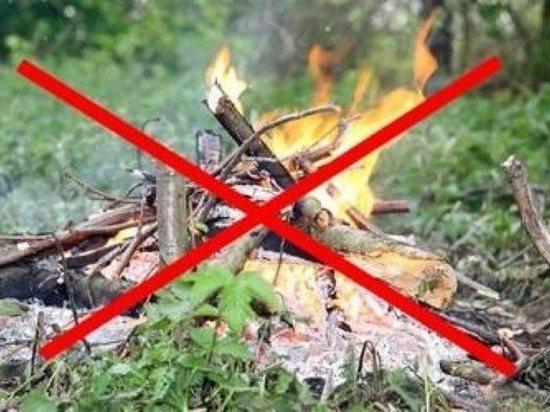 В Калмыкии объявлен особый противопожарный режим