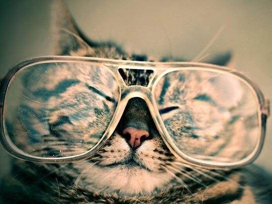 На какие болезни указывает ухудшение зрения, рассказали врачи