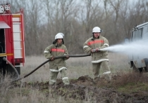 Волгоградцам напоминают о чрезвычайной пожароопасности в регионе