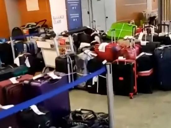 В аэропорту Шереметьево стали платить грузчикам по 200 тыс. рублей
