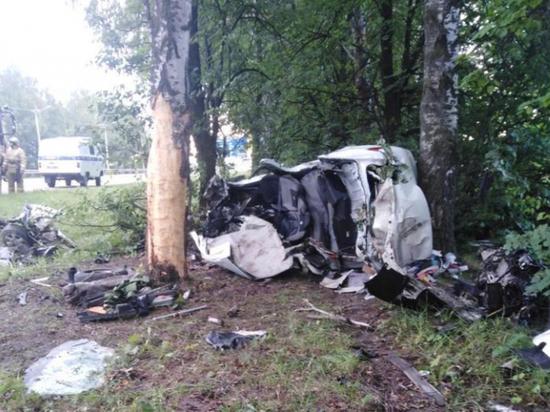 Renault врезался в дерево между Чебоксарами и Новочебоксарском, двое погибли