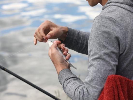 Более 3 тысяч участников и зрителей посетили Рыболовный фестиваль в Кириллове