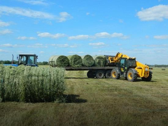 В Калмыкии заготовка кормов в самом разгаре