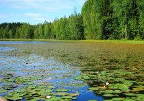 В Поморье появилась новая живописная природоохранная территория