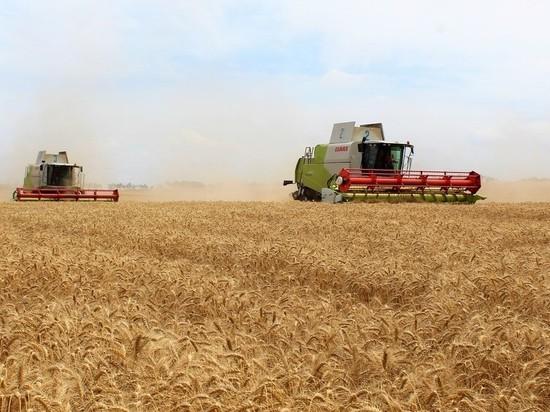 В Крыму объявлен бой теневому сельскохозяйственному бизнесу