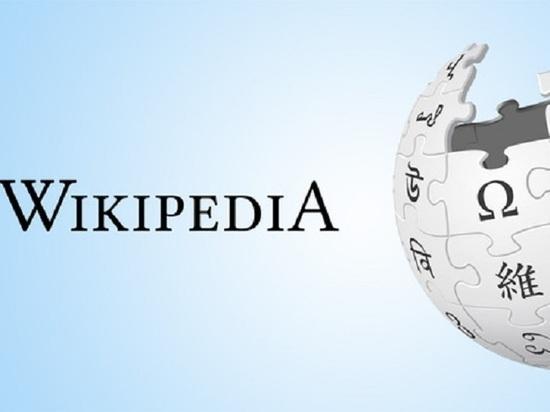 Эффективный семьянин и ЗОЖ-ник: «Википедия» забанила «позитивных» биографов губернаторов