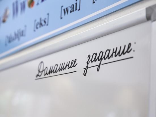 В Госдуму внесли проект, разрешающий студентам преподавать в школе