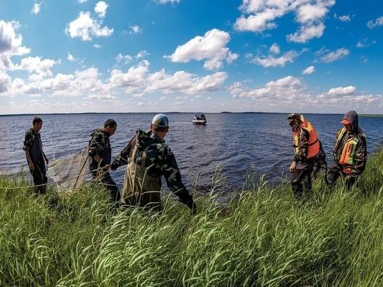 Нефтяная компания «Конданефть» успешно восполняет биологическое разнообразие Югры