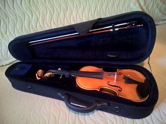 Скрипками и балалайками снабдят ДШИ Калуги