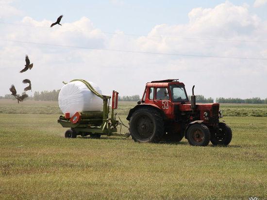 Угольщики в Кузбассе чаще других нарушают земельное законодательство