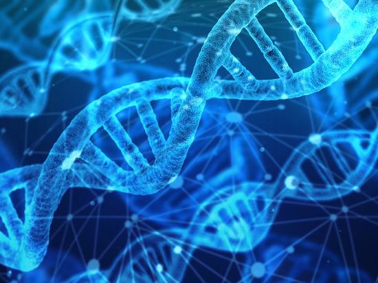 Пять российских пар попросили генетически модифицировать своих детей