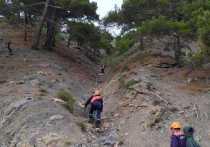 Краснодарские туристы застряли на горе в Геленджике