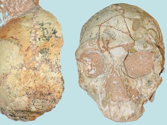 Обнаружены древнейшие останки «современного» человека вне Африки