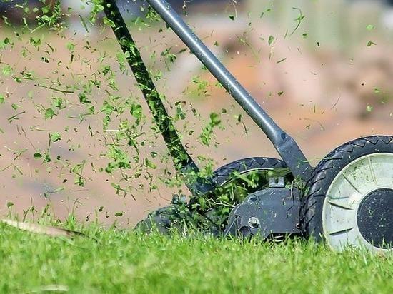 Покос травы – на контроле администрации Сургута