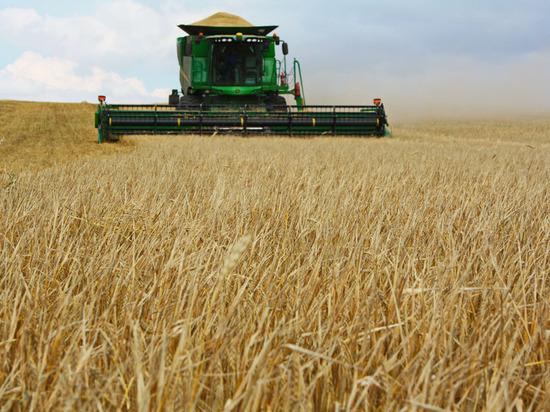 В Рязанской области началась уборка зерновых