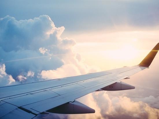 Летевший из Петербурга в Грецию самолет столкнулся с птицей
