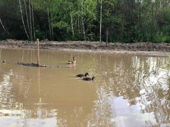 Дождь превратил ярославскую дорогу в озеро с утками