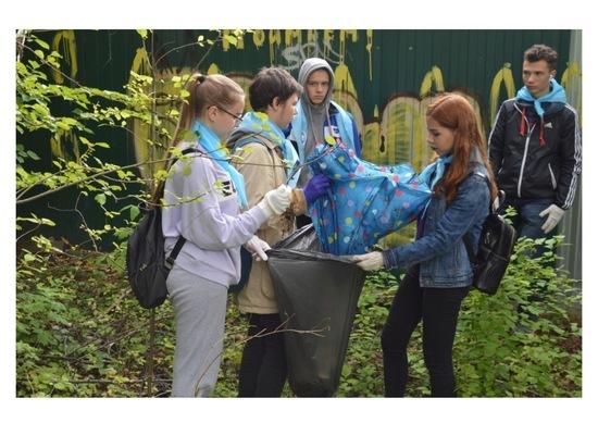 Юные серпуховичи провели очередную уборку в городском бору