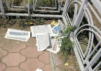 Фото дня: «Соколы Жириновского» разбросали по Улан-Удэ газеты «ЛДПР за чистый город!»