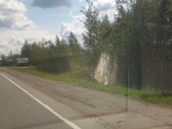 В Ярославле парашютист чуть не попал под колеса автомобилей