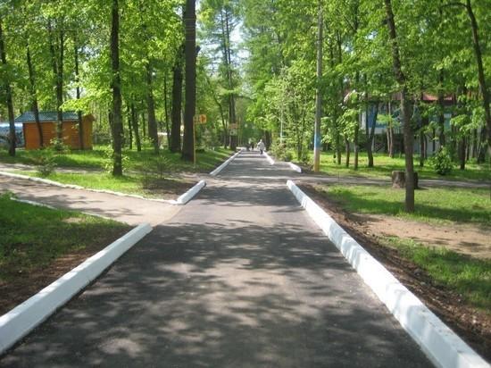 СХПК «Сад» захватил часть «Лакреевского леса» в Чебоксарах