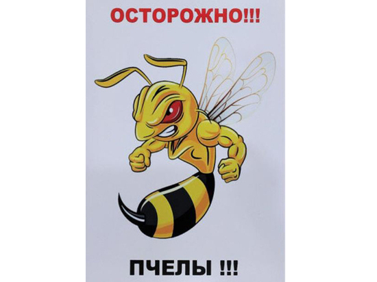Эпидемия гибели пчел в России разорила пасечников