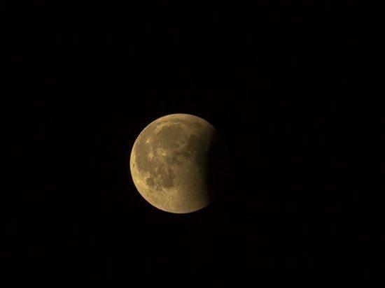 Петербуржцы смогут этой ночью увидеть лунное затмение