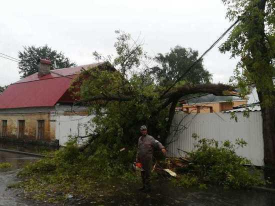 В Серпухове оперативно ликвидируют последствия в результате сильных порывов ветра