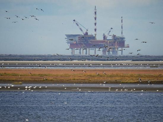 Нефтяники откладывают освоение арктического шельфа до 2030