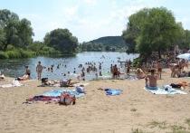Омовение откладывается: в Воронежской области загнивают пляжи