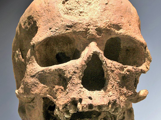 Современные люди оказались потомками неизвестного биологического вида